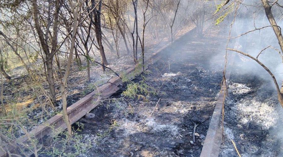Protección civil carece de equipo para combatir incendios en Tehuantepec | El Imparcial de Oaxaca