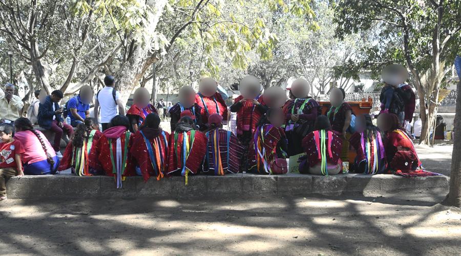 Piden evitar que lenguas indígenas de Oaxaca desaparezcan | El Imparcial de Oaxaca