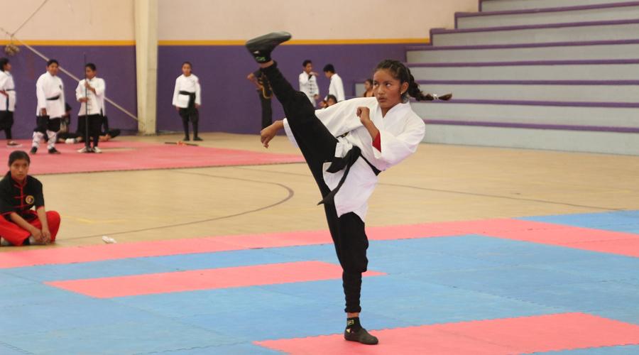 Preparan el Campeonato de Estrellas en artes marciales