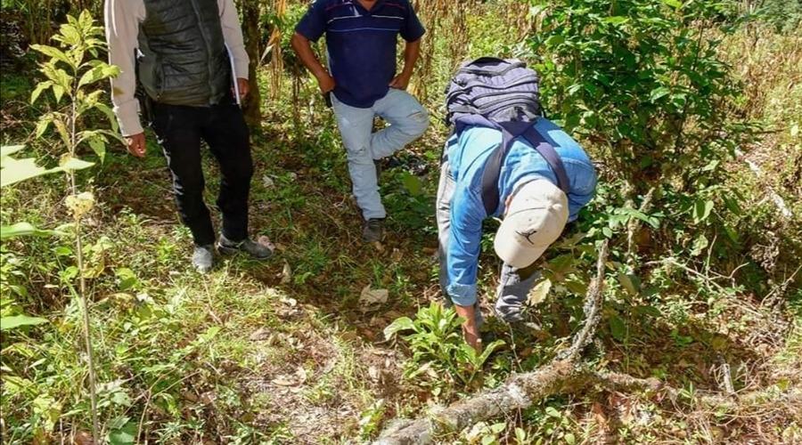 Itundujia, Oaxaca busca impulsar a productores de mezcal | El Imparcial de Oaxaca