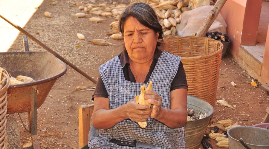 Abandonan el campo de Oaxaca; se acaba el maíz