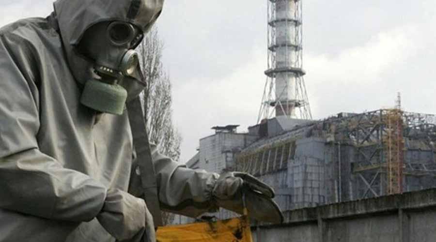 Identifican hongos que comen radiación en Chernóbil   El Imparcial de Oaxaca