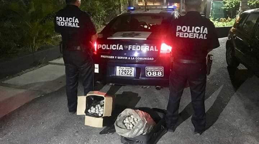 En Carretera a Salina Cruz capturan a vendedor de huevos de tortuga   El Imparcial de Oaxaca