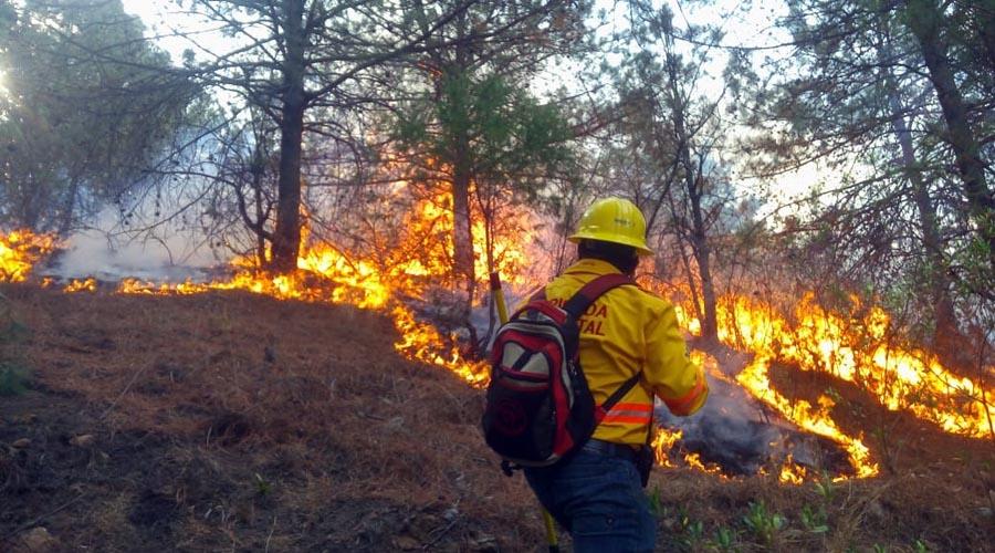 De marzo a junio será la temporada crítica de incendios forestales en Oaxaca   El Imparcial de Oaxaca