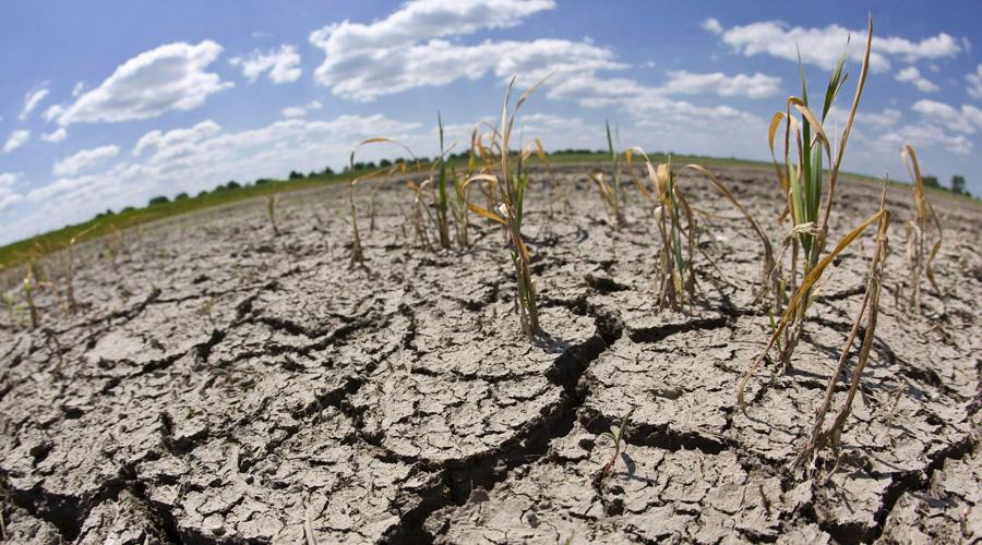 Padecen sequía severa 8 municipios de Oaxaca | El Imparcial de Oaxaca