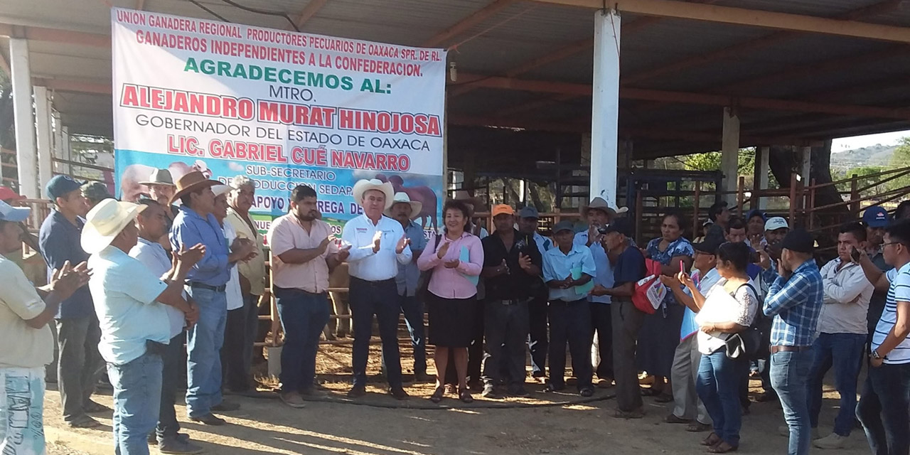 Entregan sementales de registro a ganaderos independientes de la Costa de Oaxaca