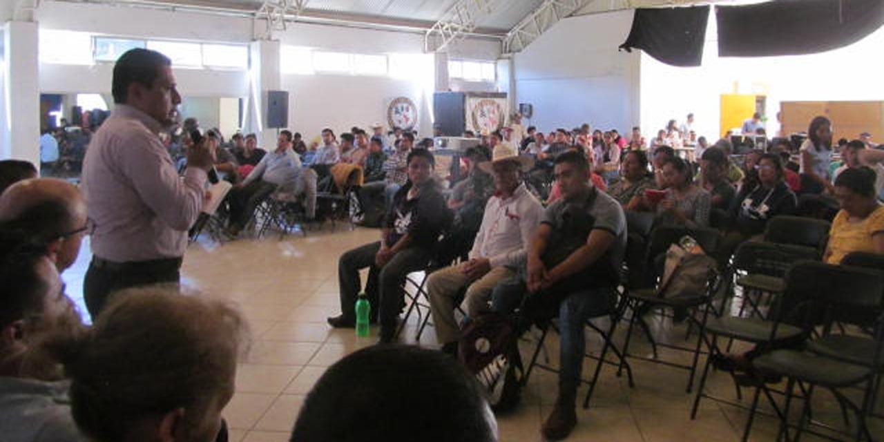 400 asistentes al ll Congreso de Aguacate Hass en Huautla | El Imparcial de Oaxaca