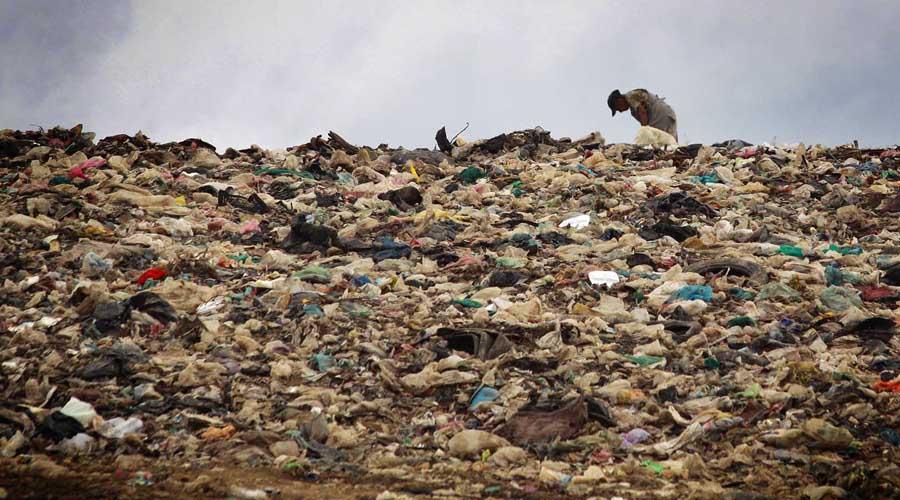 Falta de información frena la apertura de nuevos basureros para Oaxaca | El Imparcial de Oaxaca