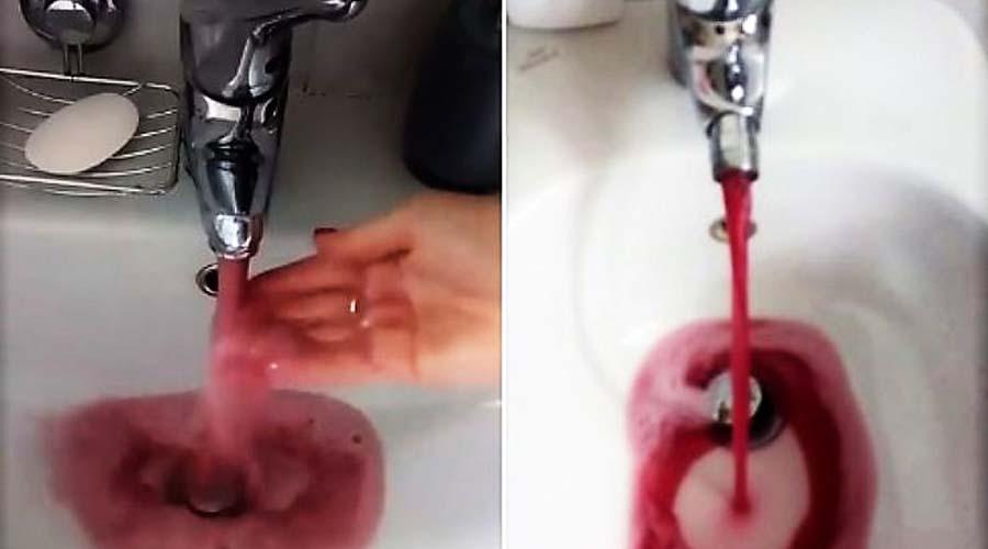 Video: Falla en una bodega provoca filtración de vino a cañerías de agua potable   El Imparcial de Oaxaca