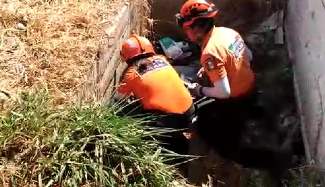 Borracho conductor  arrolla a un ciclista | El Imparcial de Oaxaca