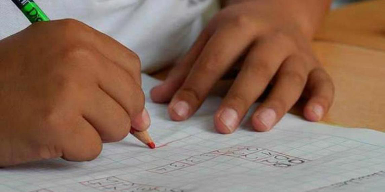 Asesorías particulares y profesores  jubilados al rescate de niños y niñas de Oaxaca | El Imparcial de Oaxaca