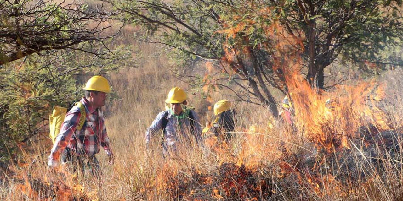 Siguen labores para apagar 27 incendios forestales en México | El Imparcial de Oaxaca
