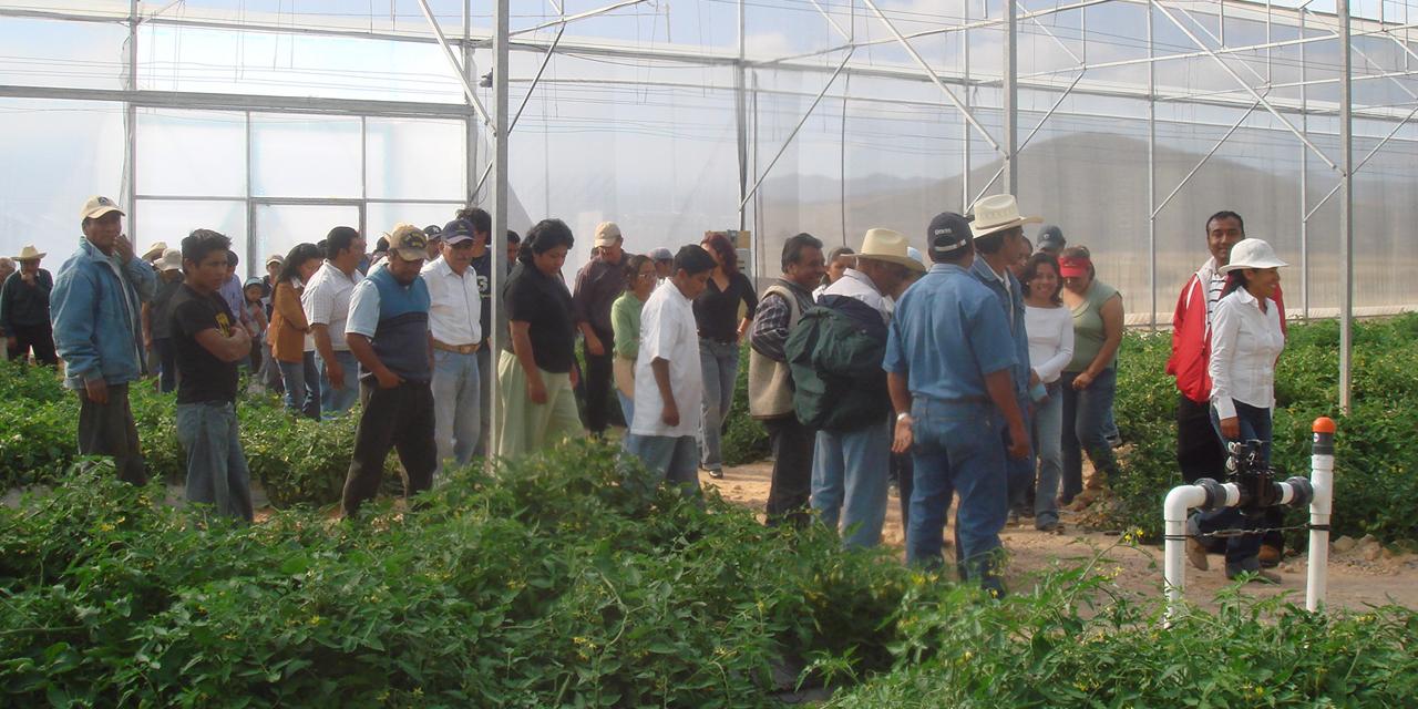 Preparan zonas para la captación de agua en la Mixteca | El Imparcial de Oaxaca
