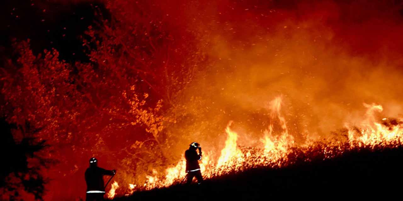 Inicia la semana con 52 incendios forestales activos en 16 estados | El Imparcial de Oaxaca