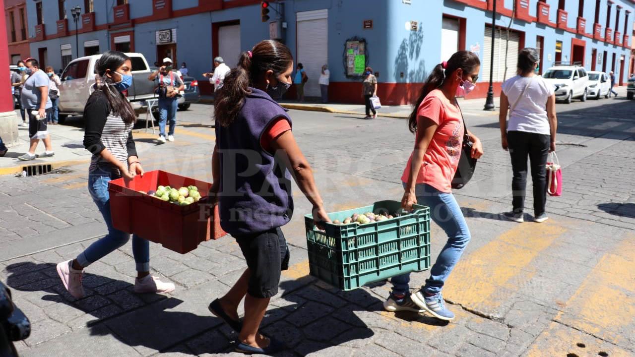 Convocatoria de apoyo a productores locales rebasa a capacidad de venta   El Imparcial de Oaxaca