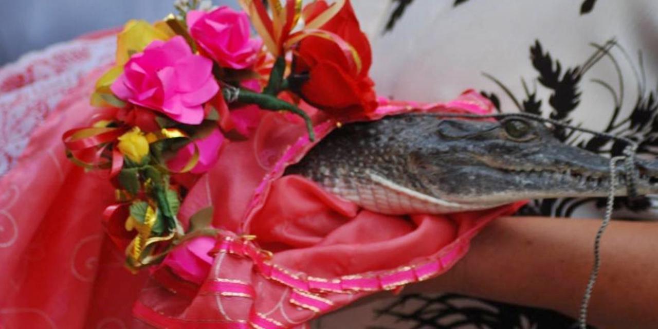 Suspenden boda entre edil y Princesa Lagarto en Huamelula por Covid-19 | El Imparcial de Oaxaca
