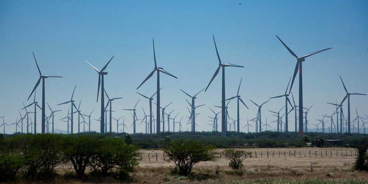 Presionan a eólicas del Istmo; buscan frenar avance de energía verde | El Imparcial de Oaxaca