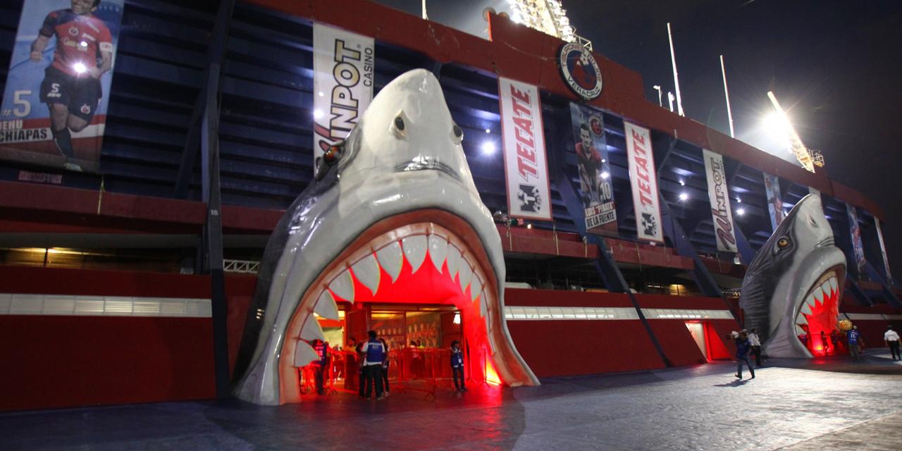 Chapus se toparán con el Tiburón en la LBM | El Imparcial de Oaxaca