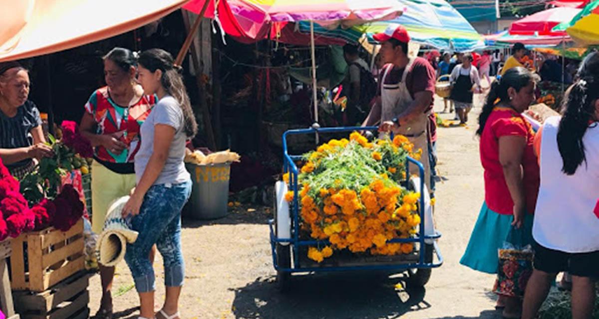 Preferimos morir de Covid-19 que de hambre: comerciantes del Istmo de Oaxaca   El Imparcial de Oaxaca
