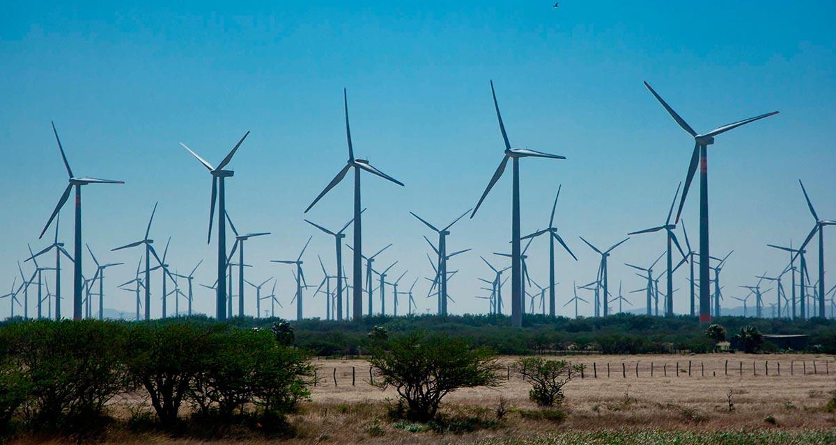 Municipios del Istmo exigen cobros  directos de empresas eólicas | El Imparcial de Oaxaca