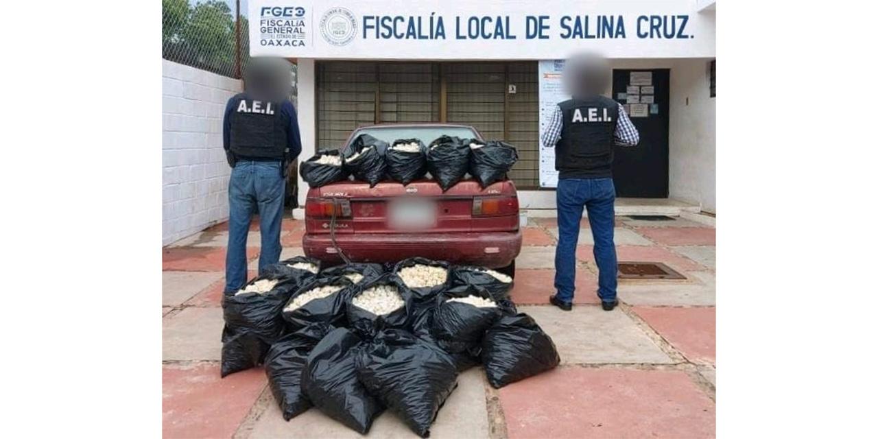 Aseguran 24 mil  huevos de tortuga en el Istmo | El Imparcial de Oaxaca