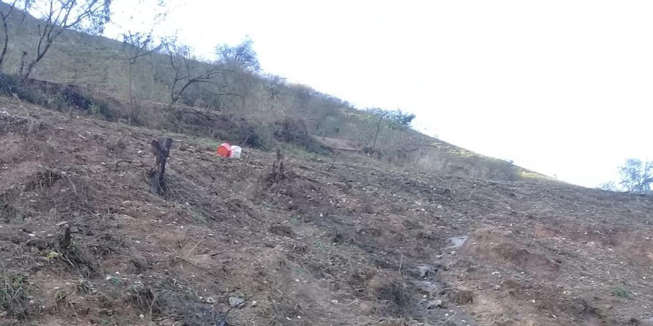 Cultivos perdidos en Juxtlahuaca por lluvias torrenciales   El Imparcial de Oaxaca