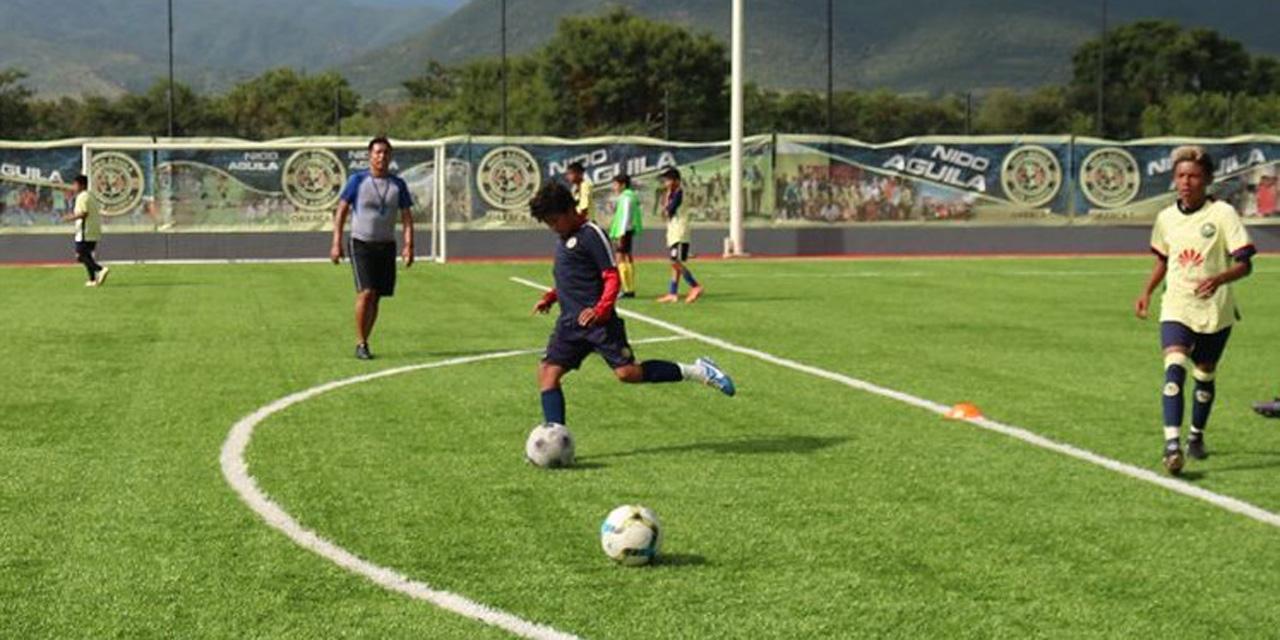 El Club Dragones de Tercera División abre visorías | El Imparcial de Oaxaca