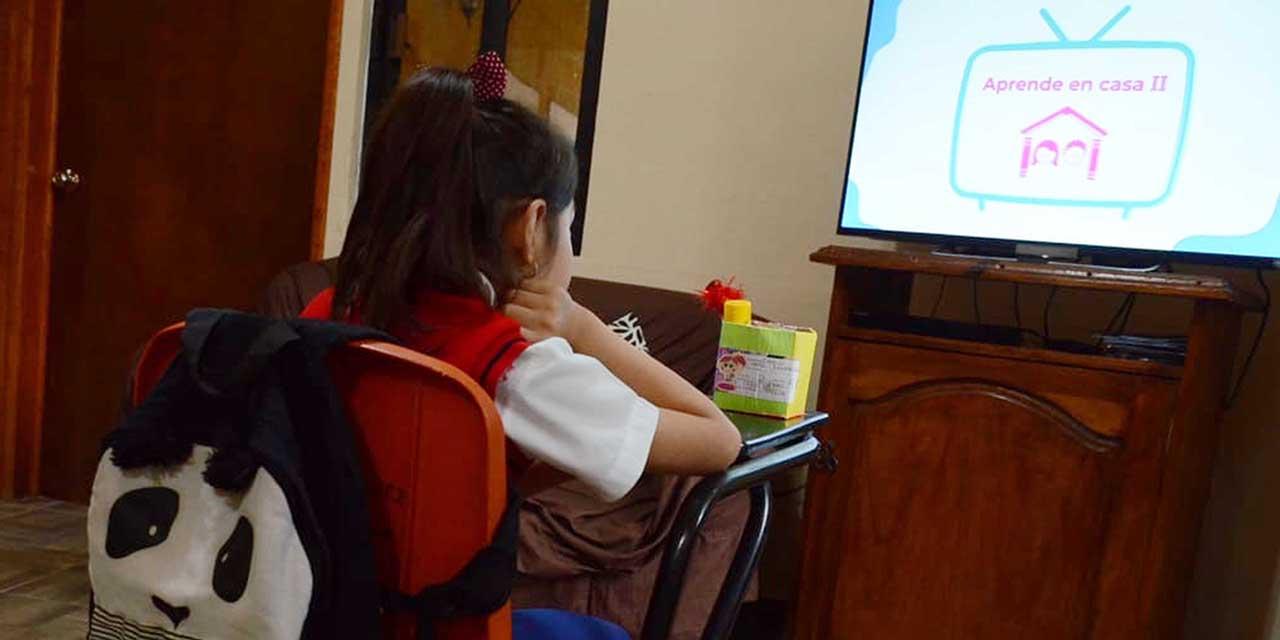 Adultos mayores acompañan a estudiantes en clases a distancia | El Imparcial de Oaxaca