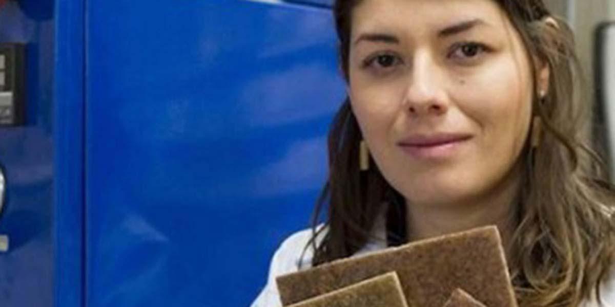 Crean bioplástico a partir de almidón de maíz y cartón   El Imparcial de Oaxaca
