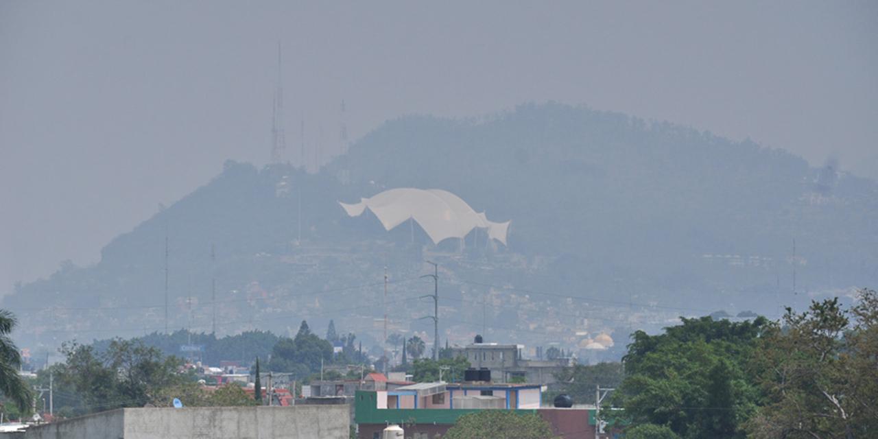 Urgen políticas públicas para proteger medio ambiente   El Imparcial de Oaxaca