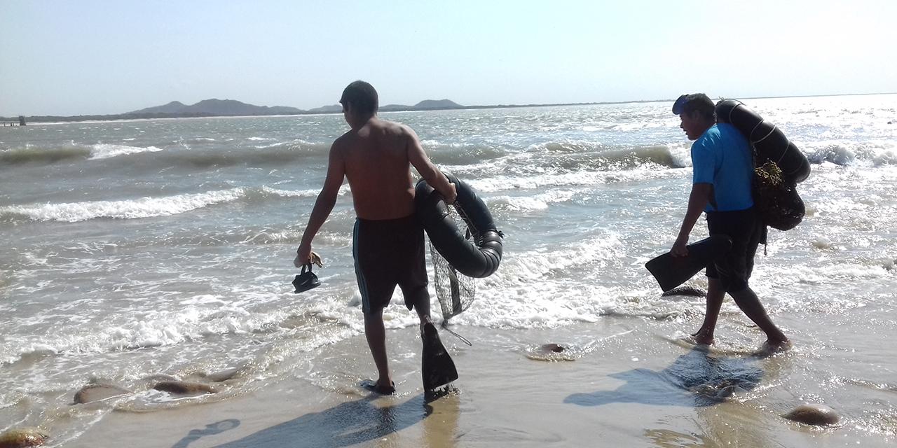 Veda de ostión en el Istmo termina en septiembre | El Imparcial de Oaxaca