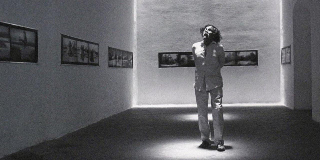 Colección Toledo: más de  100 mil imágenes vivas   El Imparcial de Oaxaca