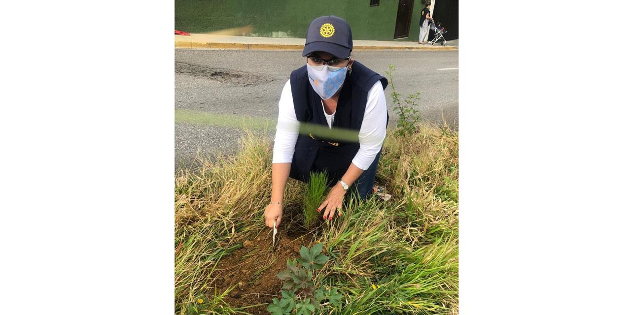 Cuidan al medio ambiente