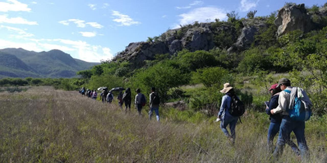 Llaman a proteger parques nacionales en Oaxaca | El Imparcial de Oaxaca