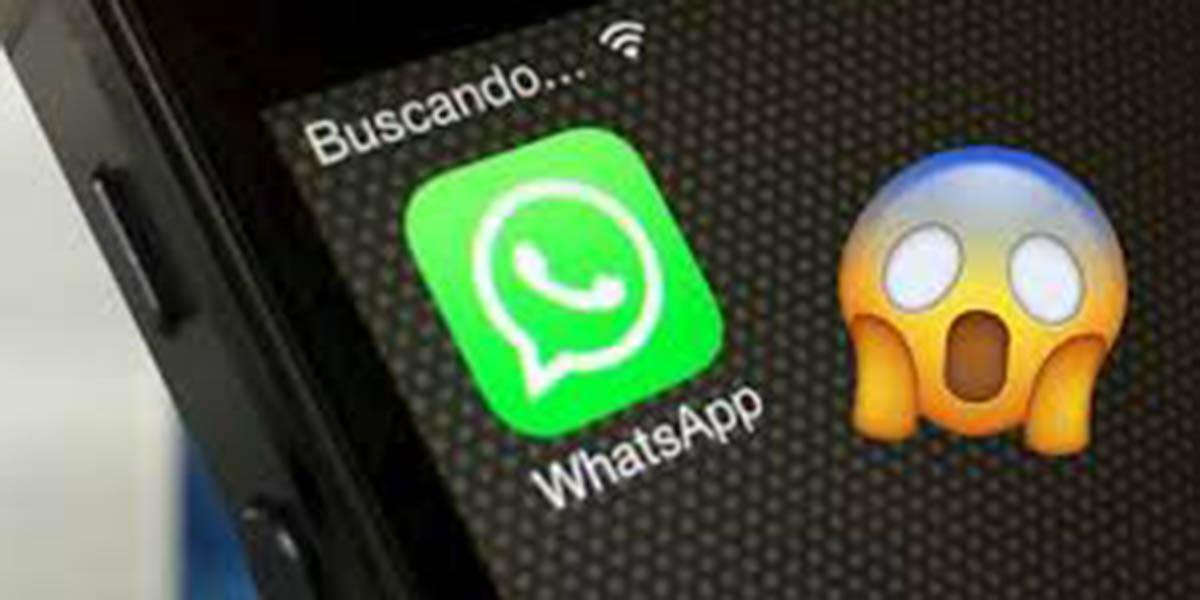 Nueva función en WhatsApp, funcionará sin Internet | El Imparcial de Oaxaca
