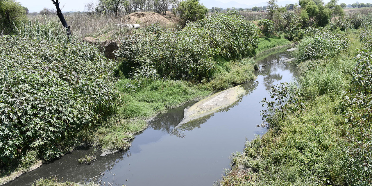 Urge generar conciencia sobre grave situación del agua en Oaxaca: FOA   El Imparcial de Oaxaca