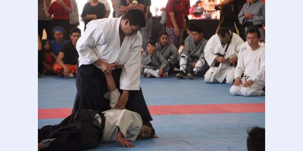 Seminario Internacional de Aikido sigue en pie | El Imparcial de Oaxaca