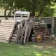 Video: El divertido juego entre un perro y una gallina se vuelve viral