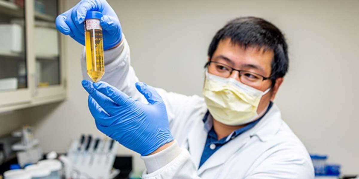 Científicos encuentran anticuerpo que neutraliza y previene el virus del Covid-19 | El Imparcial de Oaxaca