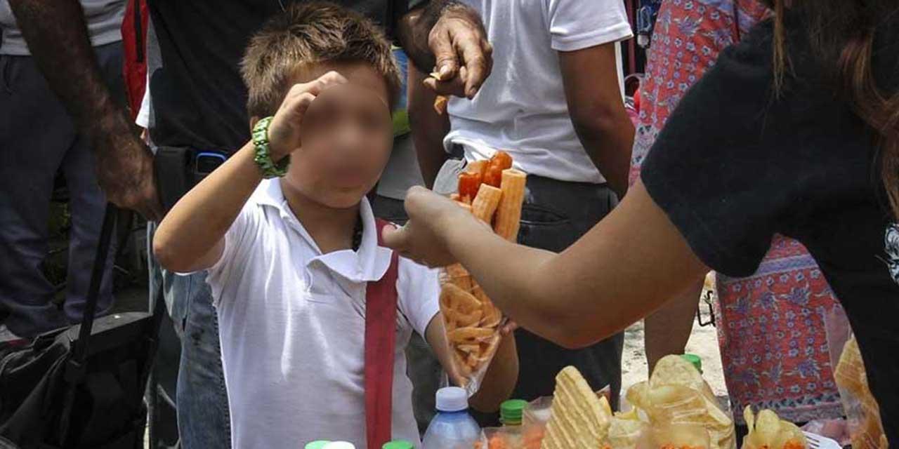 Ley antichatarra sigue sin vigencia en Oaxaca   El Imparcial de Oaxaca