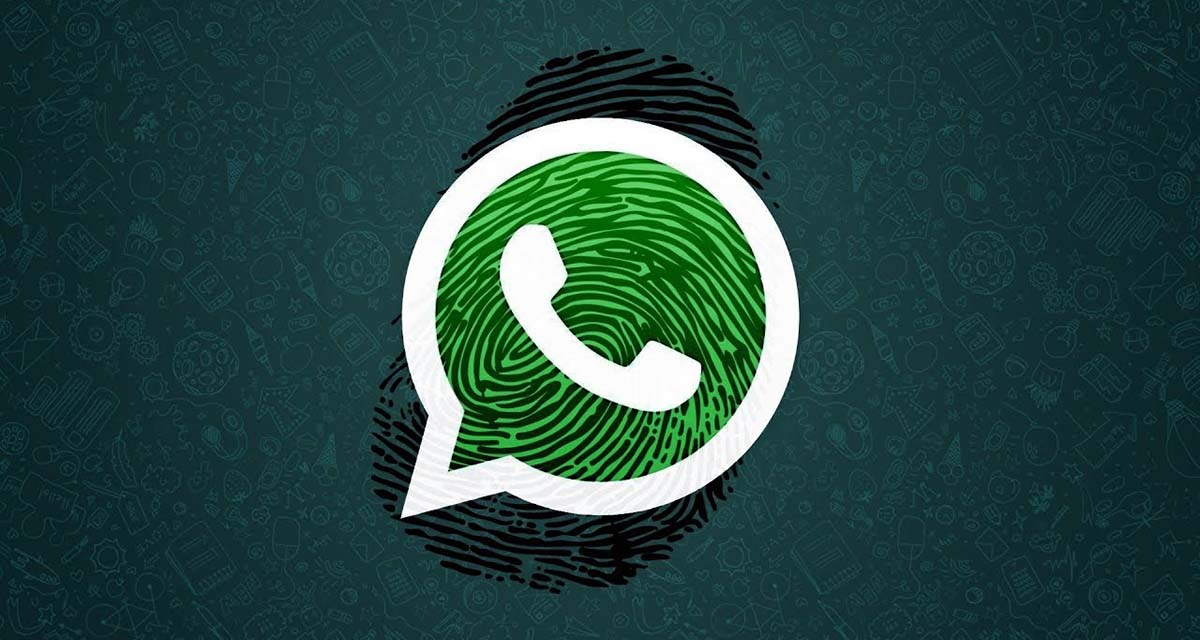 Ya podrás iniciar sesión en WhatsApp Web con tu huella digital   El Imparcial de Oaxaca