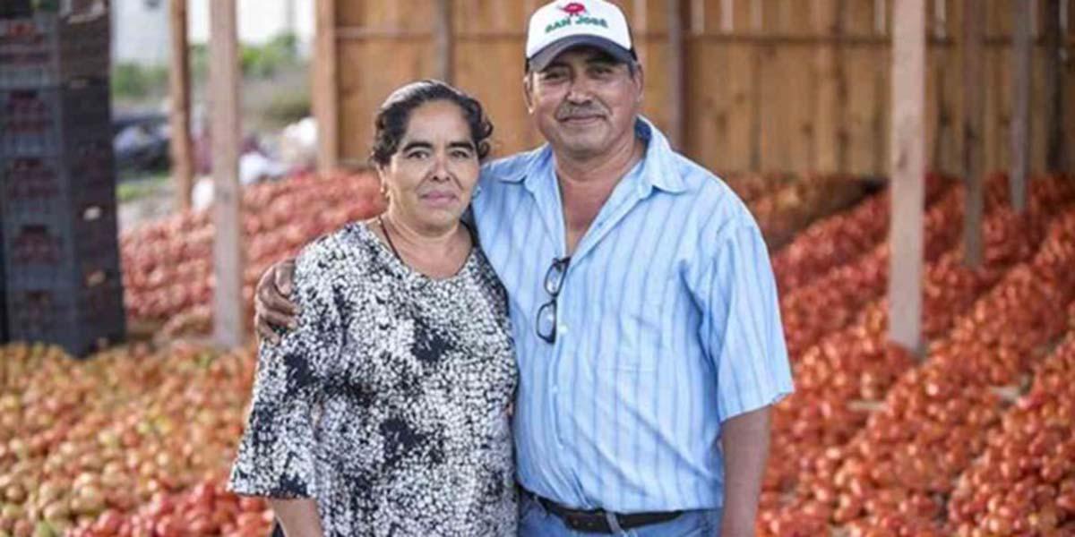 La apuesta de Walmart de México y Centroamérica para apoyar al campo mexicano | El Imparcial de Oaxaca