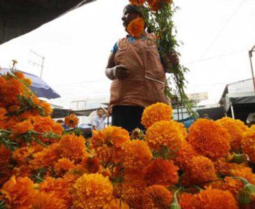 Cancelación de vendimia de muertos genera conflictos en la Central