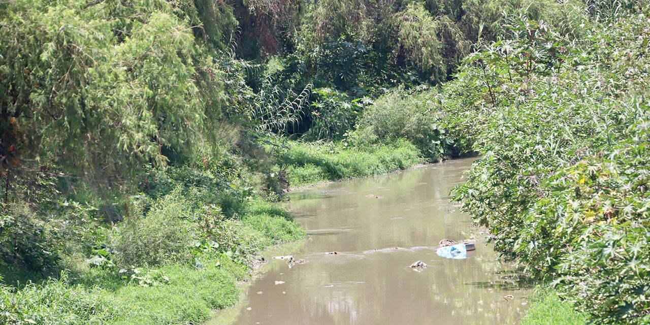 Piden salvar el ciclo del agua en Oaxaca