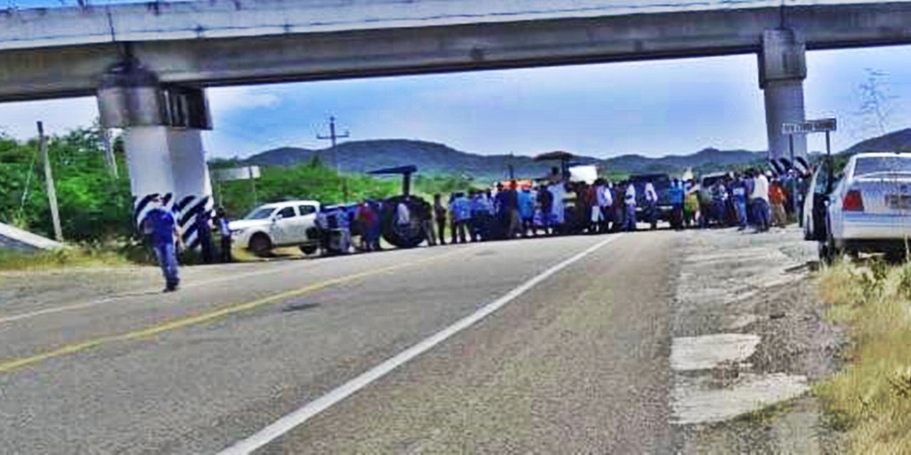 Sorgueros del Istmo demandan atención gubernamental | El Imparcial de Oaxaca