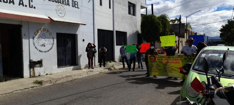Ganaderos exigen frenar corrupción por la venta del arete SINIIGA