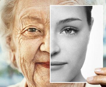Investigadores israelíes aseguran haber revertido el envejecimiento celular