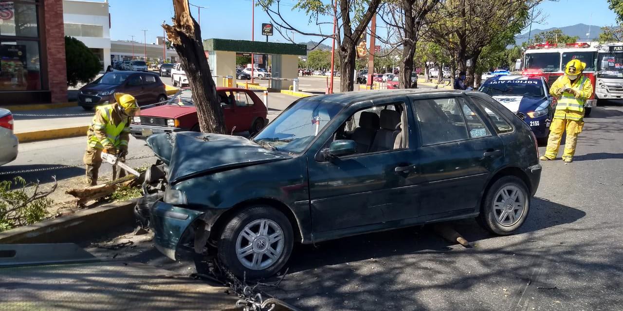 Brutal impacto contra un árbol en Oaxaca