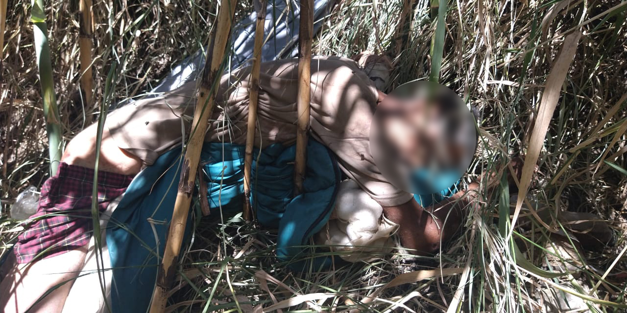 Hallan cadáver en descomposición en Xoxocotlán   El Imparcial de Oaxaca