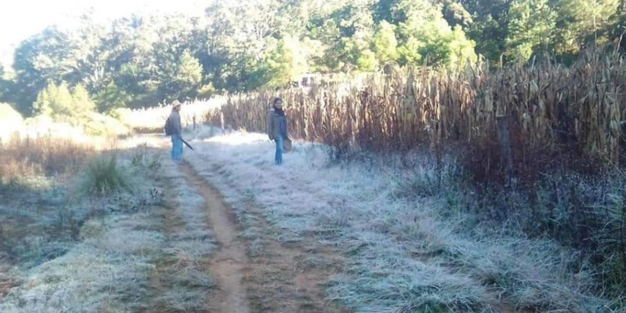 Frente frío número 13 congela la región Mixteca   El Imparcial de Oaxaca